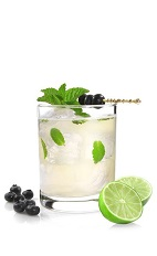 The Acai Mojito drink recipe is a blast of anti-oxidant berries in a glass. Made from VeeV acai liqueur, lime, agave nectar, blueberries, mint and club soda, and served over ice in a rocks glass.