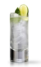 The Andalusian Gin and Tonic is a Spanish variation of the classic Gin and Tonic cocktail. Made from Martin Miller's gin, lime juice, basil and tonic water, and served over ice in a highball glass.
