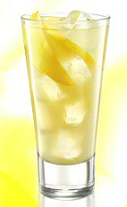 the Antonovka Szarlotka drink recipe is made from Zubrowka Bison Grass vodka and apple juice, and served over ice in a highball glass.