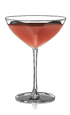 The Bacardi Cocktail is made from Bacardi rum, lime juice and grenadine, and served in a chilled cocktail glass.