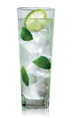 The Bacardi Mojito is a clear drink made from Bacardi rum, lime, simple syrup and mint, and served over ice in a collins glass.