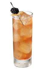 The Berry Spice drink is made from Chambord flavored vodka, honey, lemon juice, simple syrup, jalapeno pepper and ginger ale, and served over ice in a highball glass.