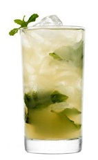 The Beyond Compear drink recipe is made from 42 Below Kiwi vodka, amaretto, pear juice and mint, and served over ice in a highball glass.