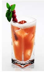 The Big Mack Daddy is an elegant orange cocktail made from Disaronno liqueur, bourbon, raspberry liqueur, cranberry juice and ginger ale, and served over ice in a highball glass.