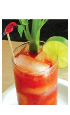 The Bloody Lip is a spicier version of the classic Bloody Mary drink recipe. A red colored cocktail made from Boca Loca cachaca, Worcestershire sauce, Tabasco sauce, tomato juice, celery salt and black pepper, and served over ice in a highball glass.