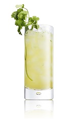The Cali Gold is a good drink to serve alongside traditional tacos or authentic Mexican food. Made from Caliche rum, lime juice, pineapple juice, agave nectar, cilantro and club soda, and served over ice in a highball glass.