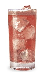 The Cranberry Cactus is a red drink made from DeKuyper Cactus Juice, cranberry juice and club soda, and served over ice in a highball glass.