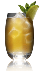 The Muscovy Mule cocktail recipe is made from Danzka Fifty vodka, lime juice, bitters and ginger beer, and served in a chilled cocktail glass.
