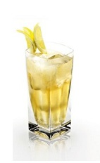 The Disaronno and Schweppes is an orange drink made from Disaronno, bitter lemon and lemon slices, and served over ice in a highball glass.