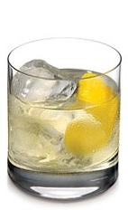 The Dutch Lemonade is a European variation of a refreshing lemonade drink. Made from Ketel One Citroen vodka and fresh lemonade, and served over ice in a rocks glass.