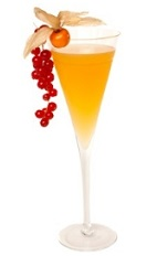 The Dutch people have a long and interesting history to be enjoyed by all. Start out with some Dutch Stories, an orange colored cocktail recipe made from genever, apricot brandy, maraschino liqueur, lemon juice and gooseberry jam, and served in a chilled cocktail glass.