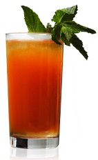 The El Zanahoria is an orange drink made from Patron tequila, carrot juice, ginger liqueur and orange liqueur, and served over ice in a highball glass.