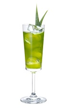 The Envy drink is a wonderful combination of flavors to create one of the best green colored drinks ever created. Made from Midori melon liqueur, Zubrowka bison grass vodka, green tea liqueur, pineapple juice, lemon juice, mint leaves and sugar, and served in any chilled stemmed glass.