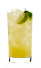 The Feijoa Fix drink recipe will satisfy your craving for this unique tropical fruit with a pineapple-mint flavor. Made from 42 Below Feijoa vodka, apple cider and lime, and served over ice in a highball glass.