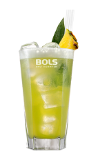 The Foamy June Bug is a green summer drink made from melon liqueur, coconut rum, pineapple juice, lime juice, club soda, Bols Banana Foam liqueur and fresh pineapple, and served over ice in a highball glass.