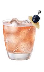 The French Ginger Ale drink is made from Chambord flavored vodka and ginger ale, and served in an old-fashioned glass full of ice.