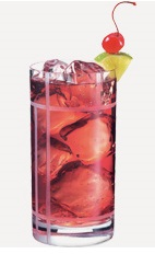 The Fruit Punch Fizz drink recipe is a red colored cocktail made from Burnett's fruit punch vodka, ginger ale and cranberry juice, and served over ice in a highball glass.