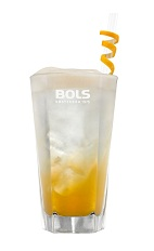 The Funky Apricot Fizz is an exciting orange Spring drink made from apricot brandy, lemon juice, simple syrup, club soda and Bols Amaretto Foam liqueur, and served over ice in a highball glass.