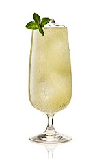 The Gin-Gin Mule is made from Beefeater gin, lime juice, simple syrup, mint and ginger beer, and served over ice in a highball or other tall glass.