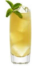The Ginger Man is an orange colored drink made from Effen vodka, ginger syrup, lime juice, bitters, mint and ginger beer, and served over ice in a highball glass.