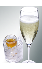 The Golden Retriever cocktail is a pair of complimentary drinks originating in France. Made from chilled Xante cognac and chilled champagne, and served in a shot glass and champagne flute, respectively.