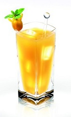 The Guava Disaronno is a tropical drink made from Disaronno and guava juice, and served over ice in a highball glass.