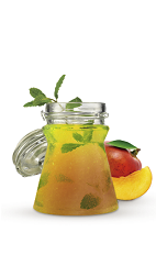 The Mango Mojito drink recipe is a lively orange colored variation of the old standard Mojito. Made from Cruzan Mango rum, mango fruit, lime juice, simple syrup, mint and club soda, and served over ice in a highball glass.