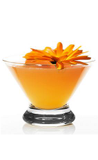 The Marigold Ofrenda is an orange colored cocktail made form Espolon reposado tequila, lime juice, triple sec, agave nectar, cantaloupe and chili powder, and served in a chilled cocktail glass.