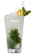 The Monarchy is an aristocratic clear and green drink made from genever, elderflower liqueur, lemon juice and mint, and served over ice in a highball glass.