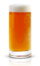 The New Beer's Eve is the perfect way to start your New Year's drinking binge. An amber colored drink made from New Amsterdam gin, Kahlua coffee liqueur and light beer, and served in a chilled beer glass.
