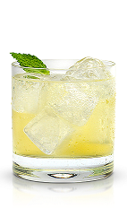 The New Ginger Zing is a snappy cocktail made from New Amsterdam Citron vodka, ginger, lemon, agave nectar, club soda and mint, and served over ice in a rocks glass.