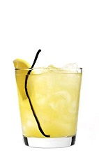 The Oh Beehive drink recipe is dedicated to all of the hard working bees that never get to see happy hour. Made from 42 Below Honey vodka, vanilla liqueur, pineapple juice and vanilla, and served over ice in a rocks glass.