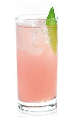 The Pampluna is a pink colored drink made from Joseph Cartron pink grapefruit liqueur, raspberry liqueur, gin and lemon-lime soda, and served over ice in a highball glass.