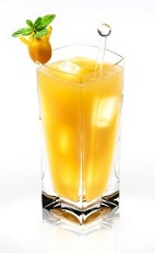 The Peach Disaronno is a refreshing blast of summertime in a cool glass. An orange drink made from Disaronno and peach juice, and served over ice in a highball glass.