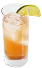 The Pisco Limon Baya Fizz drink recipe is made from Chilean pisco, mineral water, cinnamon syrup, raspberry syrup and lemon juice, and served over ice in a highball glass.