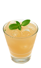 The Pomeranian is an orange colored drink made from Smirnoff pomegranate vodka, grapefruit juice, honey and mint, and served over ice in a rocks glass.