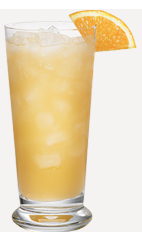The Pumpkin Punch drink recipe is an orange colored cocktail perfect for Thanksgiving dinner. Made from Burnett's pumpkin spice vodka, cranberry juice and orange juice, and served over ice in a highball glass.