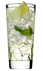 The Rose's Mojito is a classy variation of the standard Mojito drink. A clear drink made from Rose's mojito cordial, Rose's lime cordial, rum, club soda, mint and lime, and served over ice in a highball glass.