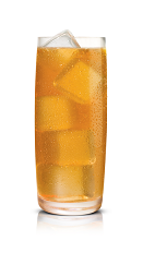 The Salted Karamel Nut drink is made from Stoli Salted Karamel vodka, hazelnut liqueur and club soda, and served in a highball glass over ice.