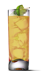 The Salty Limeade drink recipe is made from UV Salty Watermelon vodka and limeade, and served over ice in a highball glass.