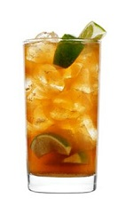 The Spice Island drink is a mysterious cocktail recipe full of hidden treasure. Made from 42 Below Kiwi vodka, lime, cinnamon, sugar and ginger ale, and served over ice in a highball glass.