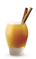 The Spiced Apple Cider is an adult drink recipe perfect for a Halloween party. Made from Cruzan 9 Spiced rum, simple syrup, lemon juice, apple cider and cinnamon, and served over ice ina rocks glass.