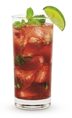 The Spiced Holly Highball drink recipe is made from Cruzan Aged Dark rum, cranberries, cinnamon, agave nectar, mint and club soda, and served over ice in a highball glass.