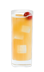 The Bitter Bird is a refreshing summer drink made from Wild Turkey bourbon, lemon juice, simple syrup and club soda, and served over ice in a highball glass.