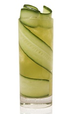 The Patron Garden is a fancy green drink made from Patron tequila, cucumber, orange bitters, mint and cardamom, and served over ice in a highball glass.