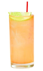 The Pinta is an orange drink made from Patron tequila, ginger beer and lime, and served over ice in a highball glass.