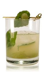 The Tia Marta is a green drink made from Patron tequila, basil, green grapes, lime juice and agave nectar, and served over ice in a rocks glass.