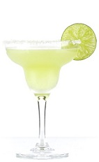 Tommy's Margarita is an exciting variation of the classic Cinco de Mayo cocktail recipe. Made from Excellia tequila, lime juice and agave nectar, and served in a salt-rimmed margarita glass.