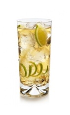 The Twinger is a light and crisp summer drink made from The King's Ginger liqueur, ginger ale and Angostura bitters, and served over ice in a highball glass.