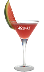 The Watermelon Martini is a great summer cocktail taking full advantage of the summer watermelon harvest. A red colored drink recipe made from Volare Watermelon liqueur, vodka, watermelon, simple syrup and lemon juice, and served in a chilled cocktail glass garnished with watermelon.